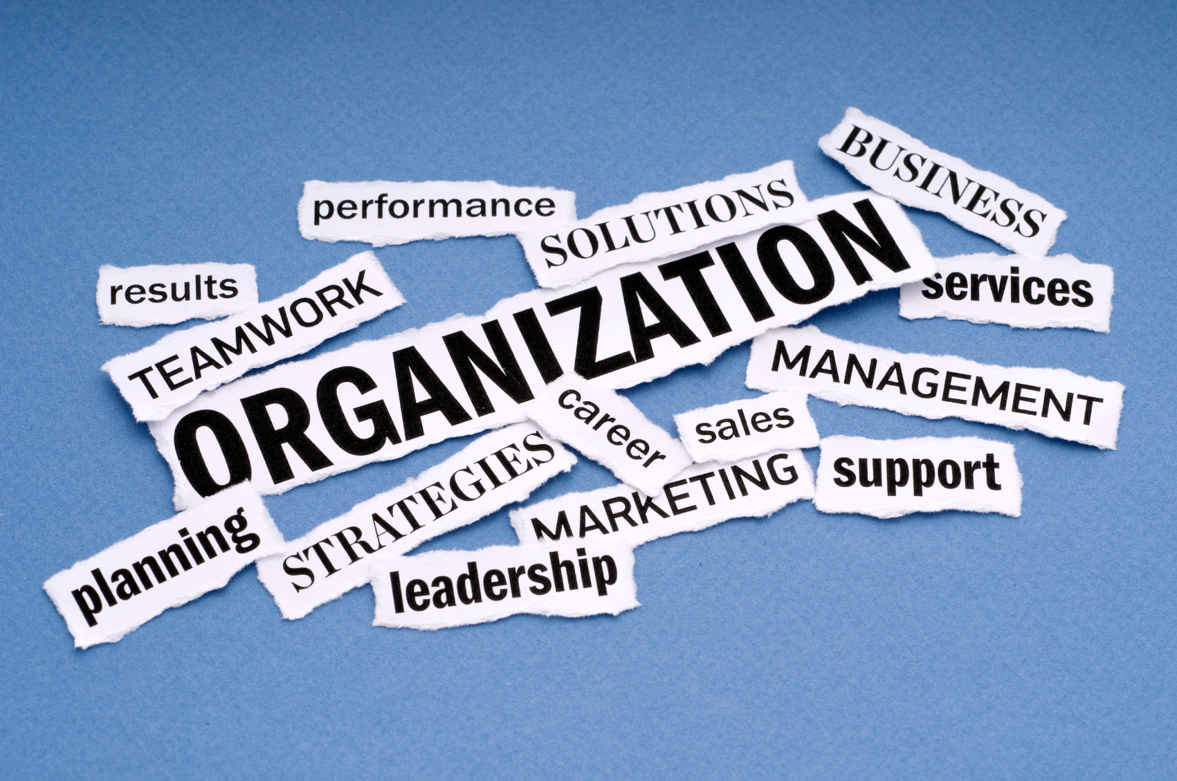 alternatives your organization must consider to realize growth Another alternative is to consider the non-core businesses of the firm is there the potential to leverage present positions into attractive growth as such, they help colleagues understand the many why's of organizational life for example: why the organization must perform at a high level in the.