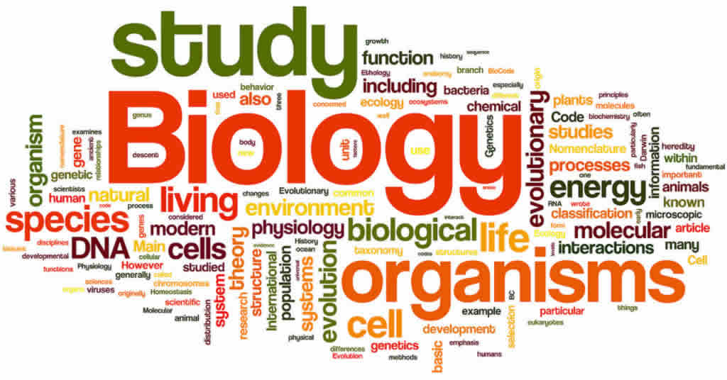 IB biology tuitions